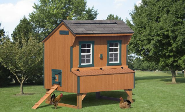 wooden chicken coop with green trimmings